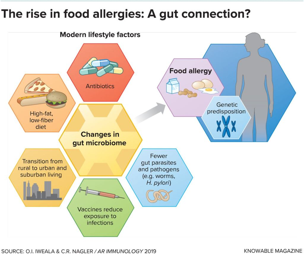 the cause of food allergies